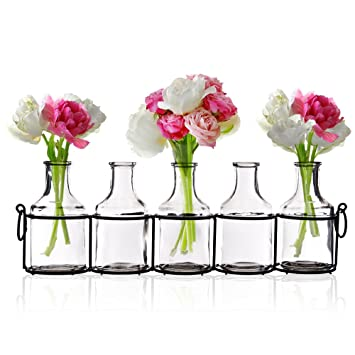 225 & Emenest Small Glass Bud Vases for Flowers in Black Metal Rack Stand Window-Sill Display Set of 5 Crystal Clear Flower Vase Decorative Centerpiece ...