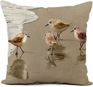 Topyee Throw Pillow Cover 18x18 Inch Beach Sandpipers at The Tropics Tropical Ocean Scenery Sand Home Decor Pillowcases Square Pillow Cases Cushion Covers for Sofa Couch Bed