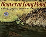 img - for Beaver at Long Pond book / textbook / text book