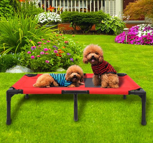 Large Indoor/Outdoor Elevated Portable Pet Sleeping Camping Cot Dog (Bone Microban)