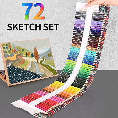 Dowswin 72 Colored Pencils Set For Adult Coloring Book,Professional Color Pencils Art Pencils For Kid Adults Artists Student Beginners Drawing Canvas Pencil Bag
