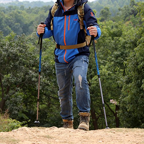 OUTAD Aluminum Collapsible Anti-Shock Walking / Trekking / Hiking Poles with Twist-Locks (2 Pack)