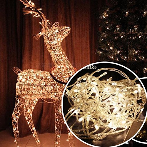 200 Led Christmas Lights Warm White