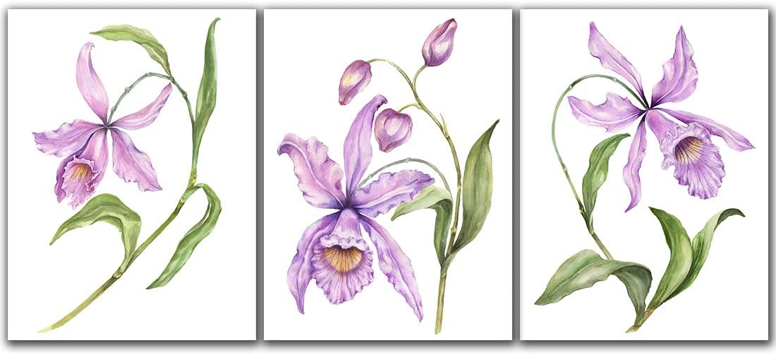 A Cup of Tea Orchid painting wall art spring purple flower green leaves pictures canvas print walls decor Framed artwork for living room home bathroom decoration 3 Pannels 12