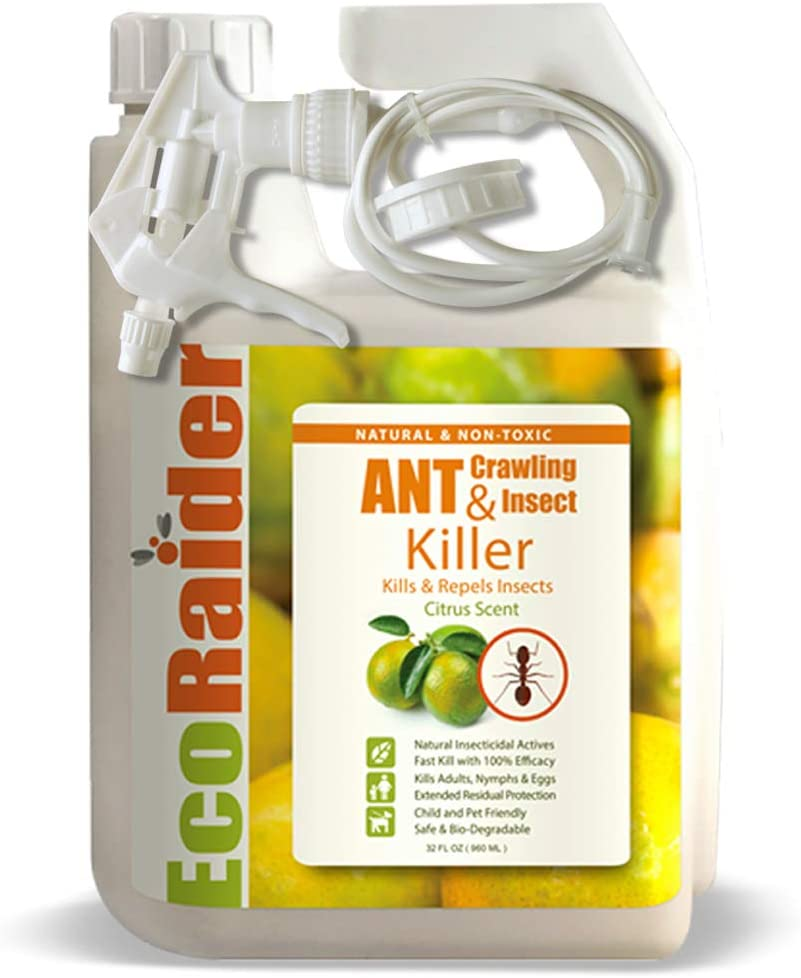 Dog Safe Ant Killers - Exterminate Ants while Your Dog is Completely Protected! 4