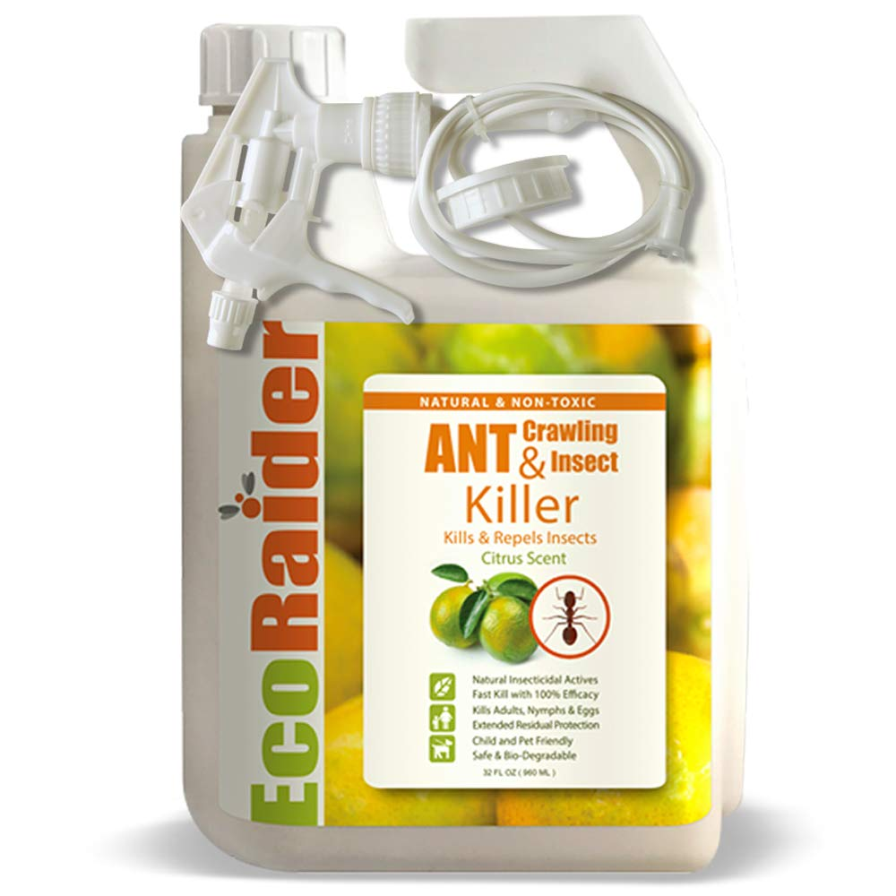 EcoRaider Ant & Crawling Insect Killer (32 OZ), 100% Fast Kills, Also Kills Fire Ants. Lasting Repellency, Safe for Children & Pets