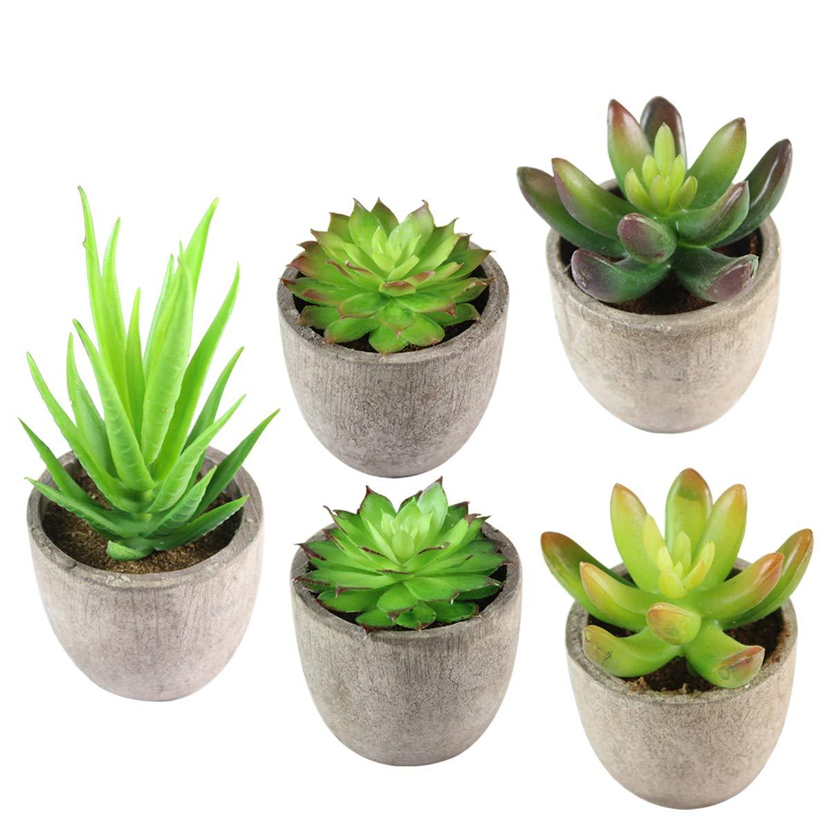 Artificial Succulent Plants, KidsHobby 5PCS Fake Succulent Planter Assorted Potted Faux Cacti Plants, Small Succulent Plants with Gray Pots for Home Office Decor