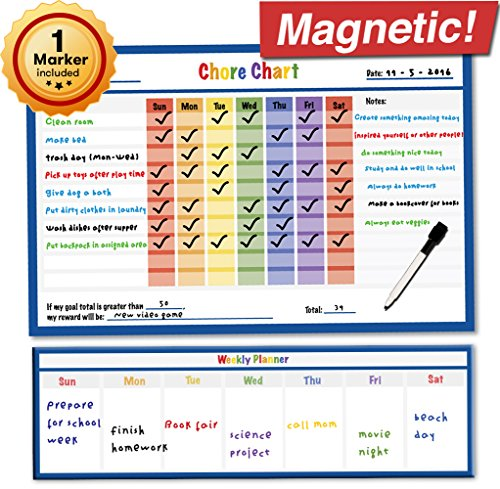 Dry Erase Magnetic Chore Chart - 17