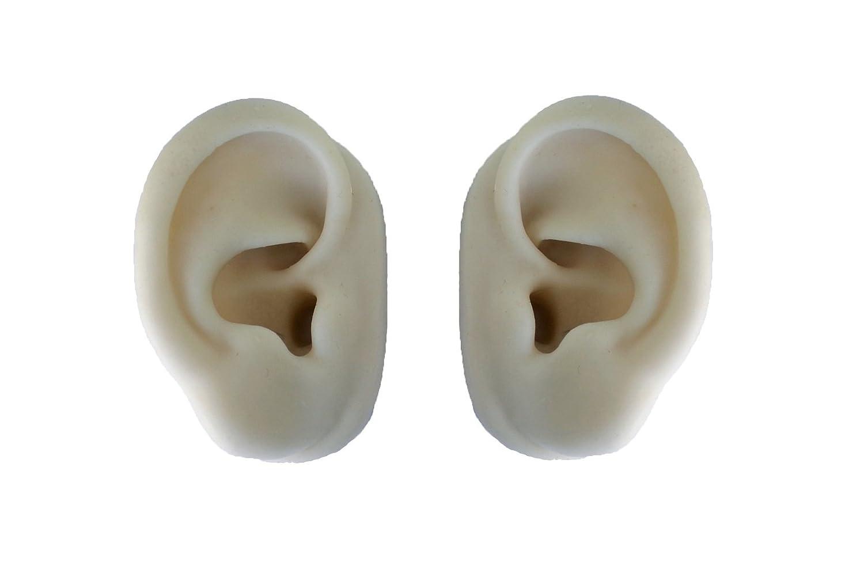 Modelo de orejas (par) blanco para acupuntura - Leonidov: Amazon ...