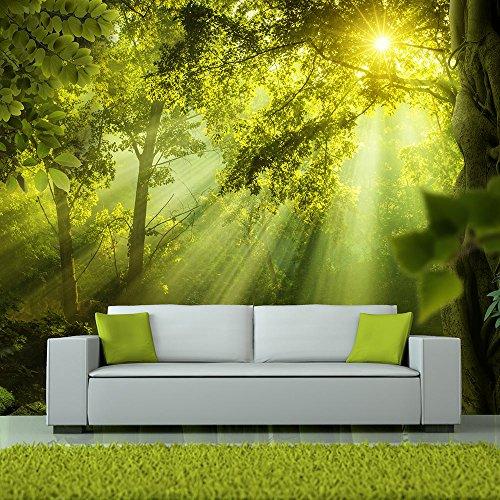 Vlies Fototapete 400x280 cm ! Top - Tapete - Wandbilder XXL - Wandbild - Bild - Fototapeten - Tapeten - Wandtapete - Wand - Wald Natur Landschaft c-A-0077-a-a