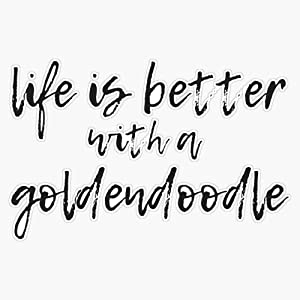 Life Is Better With A Goldendoodle - Golden Doodle Sticker Sticker Vinyl Waterproof Sticker Decal Car Laptop Wall Window Bumper Sticker 5""