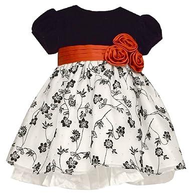 8144fa99e Amazon.com  Bonnie Jean Baby Girl 12 Months Velvet Floral Dress ...