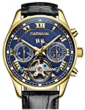 PASOY Carnival Men's Watch Automatic Tourbillon Black Leather Band Date Week Skeleton Analog Gold Watches
