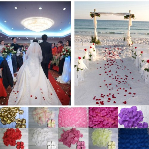 Savfy Lot 1000 Petales De Rose En Soie Tissu Petale Decoration Fete