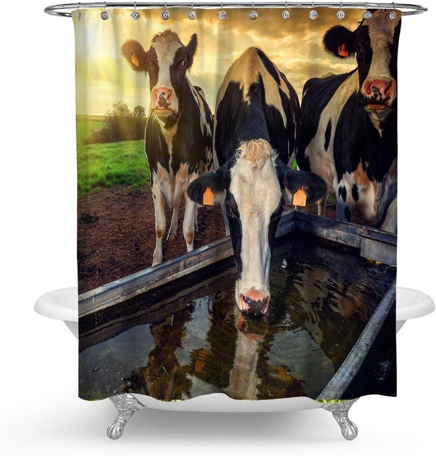 HMWR Cute Cow on Grassland Fabric Shower Curtain Farm Animal Bathroom Decor Weighted Shower Curtain for Bathtub Showers,70