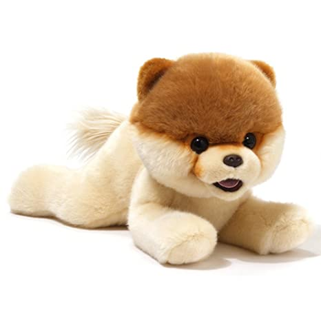 amazon com gund boo the world s cutest dog from laying down plush