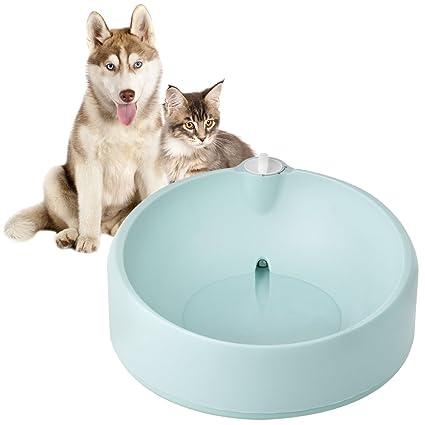 Petacc Fuente de Agua Perro Gatos Dispensador de Agua Non Slip Fuente de Agua con Filtro
