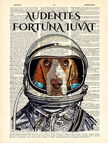 book page artwork Audentes fortuna iuvat Dog in space suit poster Latin quotes