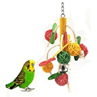 SHARLLEN Bird Ball Toys with Bell Hanging Accessories for Parrot Budgie Parakeet Cockatiels Conure Macaw African Grey Cockatoo Lovebird Cage Chew Toy