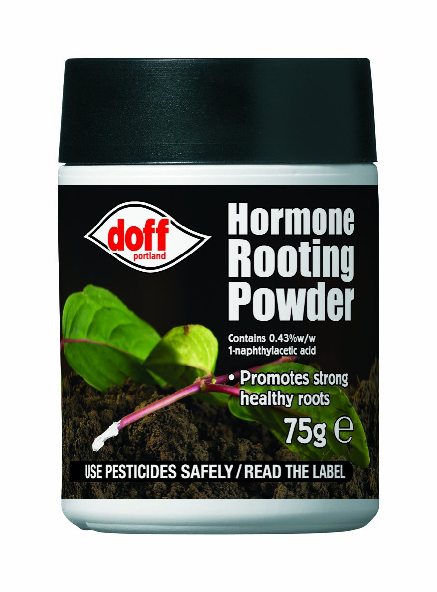 Top 10 Best Rooting Hormone For Propagation 2018 2020 On