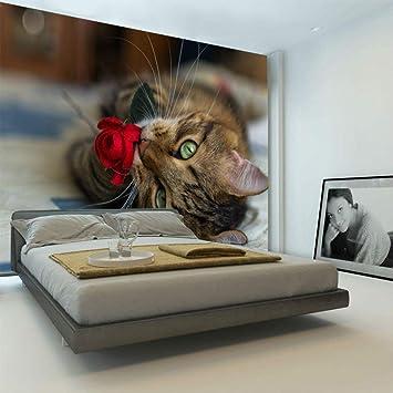 Amazon Com Cute Kitty Cat Wallpaper Custom Wall Mural 3d Animal Photo Wallpaper Bedroom Living Room Boys Kids Bedroom Room Decor Pet Rose 300210cm Home Improvement