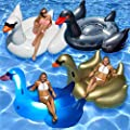 Swimline Giant Swan Float for Swimming Pools