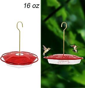 Juegoal Hummingbird Feeder (16oz)