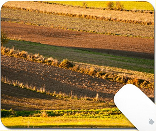Luxlady Gaming Mousepad 9.25in X 7.25in IMAGE: 23022577 different colored fields in a - Green Acres Images