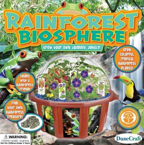 Dunecraft Rainforest Biosphere Science Kit by DuneCraft