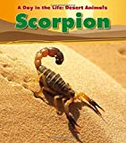 img - for Scorpion (A Day in the Life: Desert Animals) book / textbook / text book