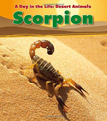 Scorpion (A Day in the Life: Desert Animals)