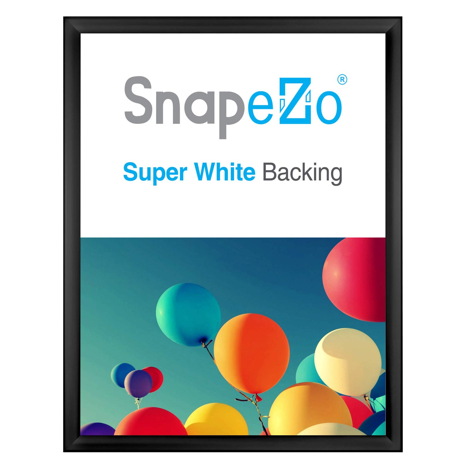 SnapeZo Weather Resistant Black Poster Frame 18x24 Inches, 1.38 Inch Outdoor Profile, Outdoor Poster Display Unit