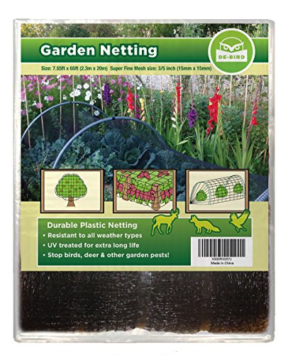 Heavy duty bird netting protect plants and fruit trees for Easy to keep garden plants