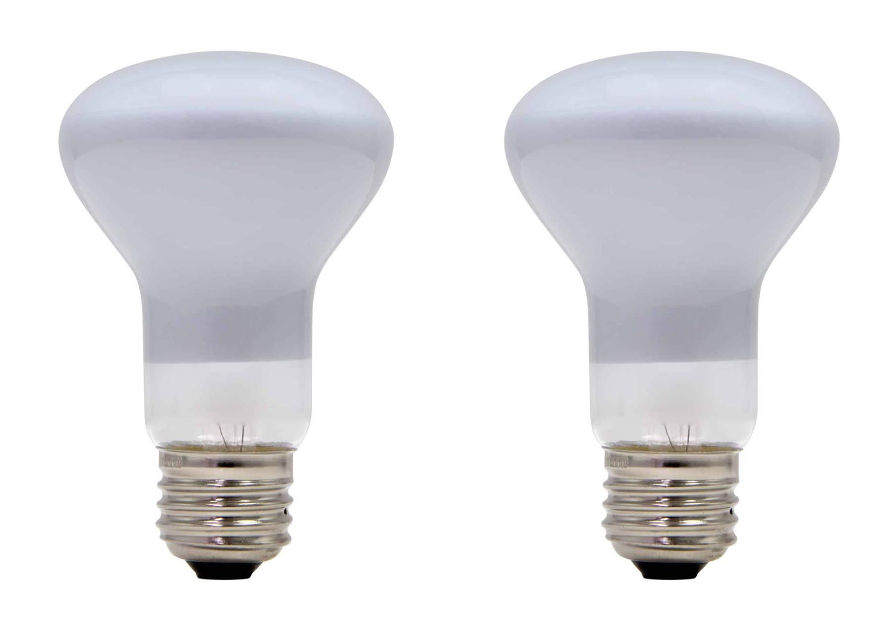2 Pack Lava Lamp 100 Watt Replacement Bulbs for Lava Brand Grande Motion Lamp