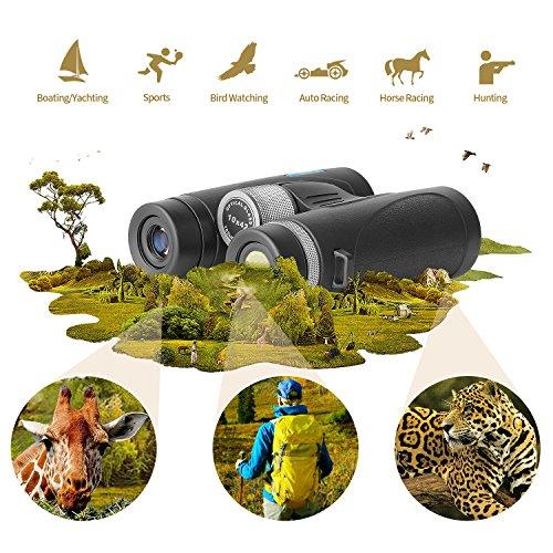 Spring: Ciwa Binoculars for Adults, Ultra HD 10X42 for Bird