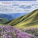 DaySpring 12″ x 12″ 2016 12-Month Wall Calendar, Psalms of Praise (73347)
