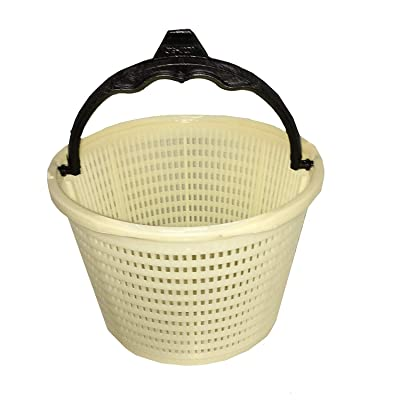 Waterway Swimming Pool Skimmer Basket 542-3240 for Renegade Skimmer: Home Improvement