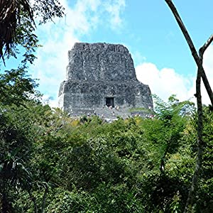 Guatemala's Tikal National Park - Animals and Plants Radio/TV Program