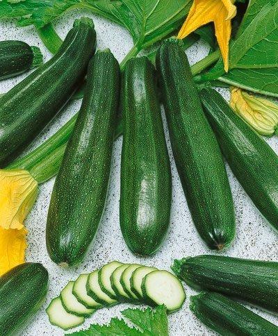 Zucchini Elite Hybrid Summer Squash Seeds - Cucurbita Pepo - 4 Grams - Approx 30 Gardening Seeds - Vegetable Garden Seed