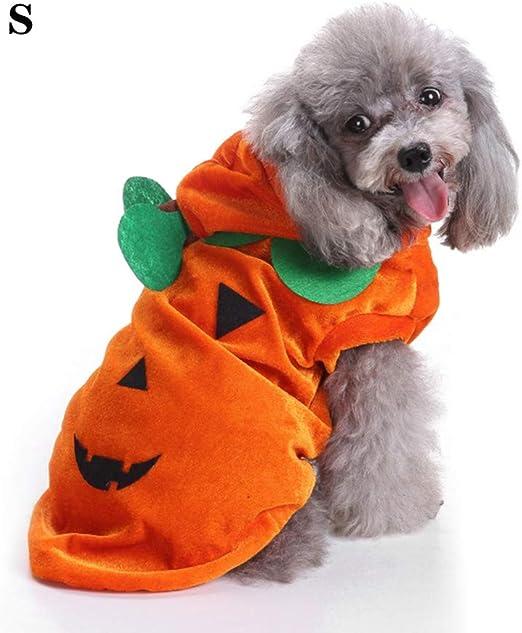 DHQSS Camisa De Halloween para Perro, Disfraz De Calabaza para ...
