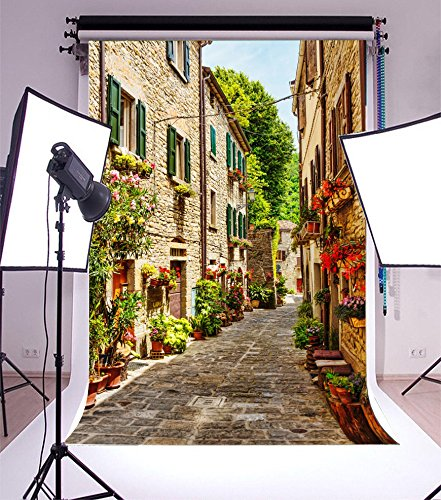 Laeacco 5x7FT Vinyl Backdrop Photography Background Narrow Street Old Town Italy European Characteristic Building Alley Bonsai Flowers and Green Vine Scenery Photo Portrait Backdrop Photo Studio Prop