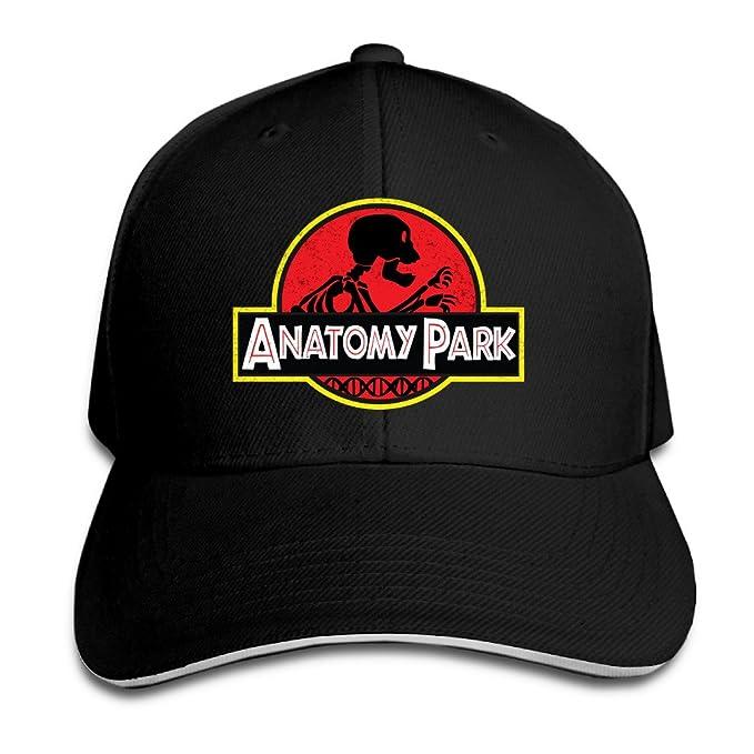 venc sombreros gorra de béisbol Plain cómodo anatomía tapa de parque ...