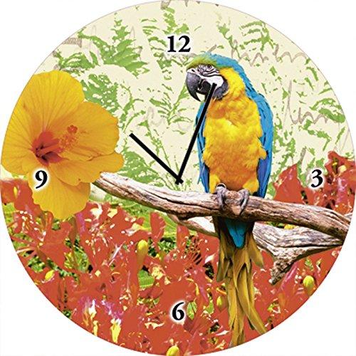 Artland Qualitätsuhren I Funk Wanduhr Designer Uhr Glas Funkuhr Größe: 35 Ø Vögel Bunt A7LS