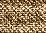 12'x20' St Croix Bronze Custom Cut Economy Indoor Outdoor Carpet Patio Area Rugs