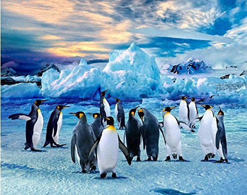 Hand Painted Penguins Group Canvas Oil Painting for Home Wall Art Decoration, Not a Print/ Giclee/ Poster, FRAMED, Ready to Hang