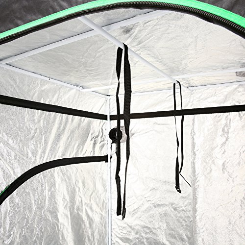 "61CtzIGsaLL - Ohuhu Grow Tent, 48""x 48""x 80"" Mylar Hydroponic Plant Growing Tent for Indoor Gardening and Germination"