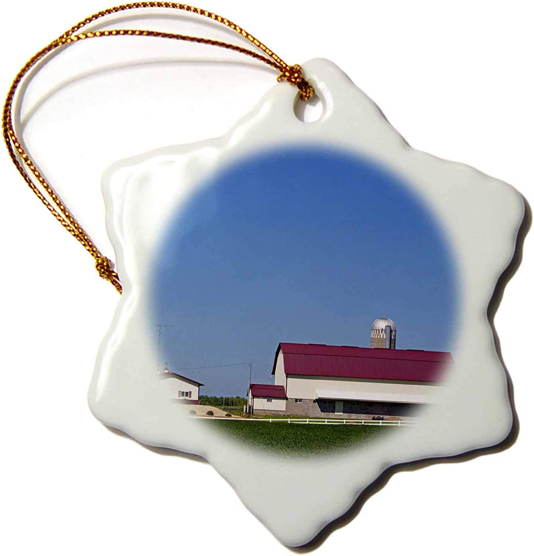3dRose Farm, Soybean Crop, Eau Claire, Wisconsin, USA - US50 DFR0050 -. - Ornaments (ORN_148888_1)