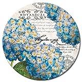 CounterArt Botanical Hydrangeas Glass Lazy Susan Serving Plate, 13''