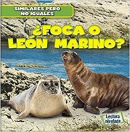 Foca O Leon Marino Seal Or Sea Lion Similares Pero No Iguales Animal Look Alikes Spanish Edition Ryndak Rob 9781482432701 Amazon Com Books