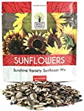 Sunflower Variety Mix 10 Types of Beautiful Sunflowers - Bulk 1 Ounce Packet - Open Pollinated Sunflower Seeds